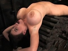 Daphne's huge 36G breasts get tighly bound.
