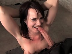 Dana DeArmond trained serve hard cock