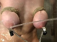 Sierra gets tied down and has nipple clamps attached to a bucket