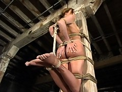 Sexy Sacha tied up and vulnerable.